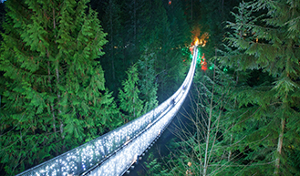 Canyon Lights Bridge Horizontal CSBS